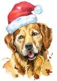 Retrato de la acuarela del golden retriever con el sombrero de Papá Noel ilustración del vector