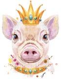 Retrato de la acuarela del mini cerdo con la corona imagen de archivo libre de regalías