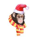 Retrato de la acuarela del mono con una corona Fotos de archivo libres de regalías
