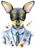 Retrato de la acuarela del terrier de juguete en un traje ilustración del vector