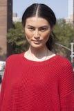 Retrato de la belleza de Sui He del modelo de moda en Nueva York Fotografía de archivo