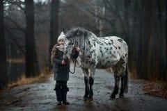 Retrato de la chica joven con el caballo del Appaloosa y los perros del dalmatian imagen de archivo