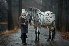 Retrato de la chica joven con el caballo del Appaloosa y los perros del dalmatian fotos de archivo libres de regalías