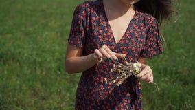 Retrato de la chica joven en campo del verano almacen de metraje de vídeo
