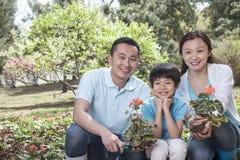 Retrato de la familia que planta las flores. Imágenes de archivo libres de regalías