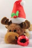 Retrato de la felpa linda del reno de la Navidad en estudio Imagenes de archivo