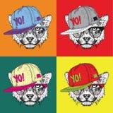 Retrato de la imagen del guepardo en los vidrios y en sombrero del hip-hop Ejemplo del vector del estilo del arte pop Imágenes de archivo libres de regalías