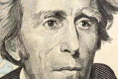Retrato de la macro de Jackson Fotografía de archivo libre de regalías