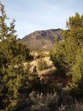 Retrato de la montaña de Sandia Imagen de archivo