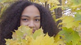 Retrato de la muchacha adolescente negra hermosa con el ramo amarillo del arce metrajes