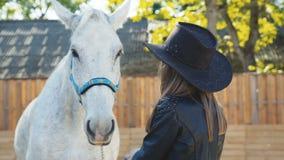 Retrato de la muchacha bonita en el sombrero que acaricia con sonrisa un caballo blanco almacen de metraje de vídeo