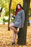 Retrato de la muchacha con la bufanda roja en el parque de la ciudad del otoño, temporada de otoño Fotografía de archivo libre de regalías