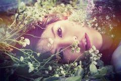 Retrato de la muchacha con las flores en campo Fotografía de archivo libre de regalías