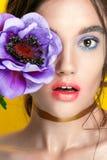 Retrato de la muchacha de la belleza con maquillaje vivo Cierre del retrato de la mujer de la moda para arriba en fondo amarillo  Foto de archivo