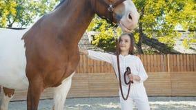 Retrato de la muchacha feliz que acaricia un caballo lindo en el hipódromo almacen de video