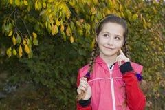Retrato de la muchacha hermosa sonriente con las trenzas Imagenes de archivo
