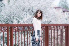 Retrato de la muchacha morena de moda Imagen de archivo