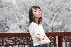 Retrato de la muchacha morena de moda Fotos de archivo