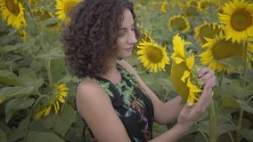 Retrato de la muchacha rizada hermosa que huele el girasol grande en el campo del girasol Conexi?n con la naturaleza Vida rural metrajes