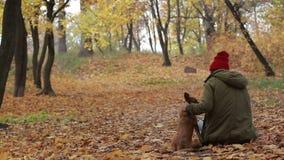 Retrato de la mujer con su perro en parque del otoño metrajes