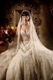 Retrato de la mujer de la boda Imagen de archivo libre de regalías