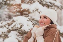 Retrato de la mujer del invierno afuera foto de archivo