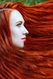 Retrato de la mujer del pelirrojo Fotos de archivo