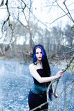 Retrato de la mujer gótica en el lago congelado Imagen de archivo