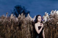 Retrato de la mujer gótica en una hierba alta, seca Fotografía de archivo libre de regalías