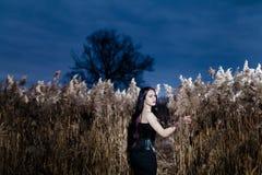Retrato de la mujer gótica en una hierba alta, seca Foto de archivo