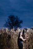 Retrato de la mujer gótica en una hierba alta, seca Imagen de archivo libre de regalías