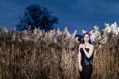 Retrato de la mujer gótica en una hierba alta, seca Fotografía de archivo