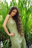 Retrato de la mujer hermosa con el pelo rizado largo Fotos de archivo