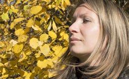 Retrato de la mujer hermosa joven. Fotos de archivo libres de regalías