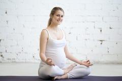 Retrato de la mujer joven embarazada que se sienta en media actitud del loto de la yoga Foto de archivo libre de regalías