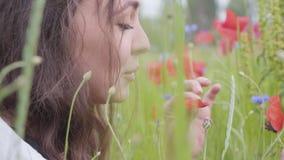 Retrato de la mujer joven linda que se sienta en campo de la amapola Conexi?n con la naturaleza Armonía verde y roja Colores del  almacen de video
