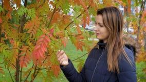 Retrato de la mujer joven preciosa y hermosa feliz en bosque en colores de la caída Las manos tocadas muchacha de las hojas de ot metrajes