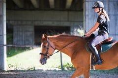 Retrato de la mujer joven que monta su caballo Foto de archivo