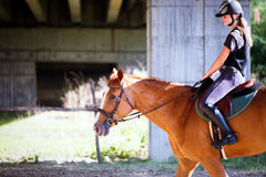 Retrato de la mujer joven que monta su caballo Fotografía de archivo libre de regalías