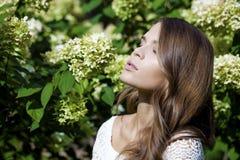 Retrato de la mujer morena joven hermosa en flor de la primavera Imagen de archivo libre de regalías
