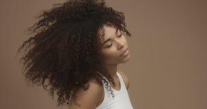 Retrato de la mujer negra de la raza mixta con el pelo afro grande, pelo rizado foto de archivo
