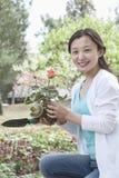 Retrato de la mujer que planta las flores. Imágenes de archivo libres de regalías