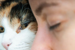 Retrato de la mujer y del gato Imagenes de archivo