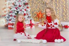 Retrato de la Navidad de dos amigos sonrientes de las hermanas de las muchachas lindas beautyful y del árbol blanco verde de lujo Imagen de archivo