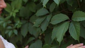 Retrato de la novia joven hermosa en parque soleado del verano, ella toca las hojas verdes almacen de video