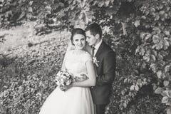 Retrato de la novia y del novio en el bosque fotos de archivo libres de regalías