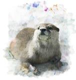 Retrato de la nutria de la acuarela libre illustration