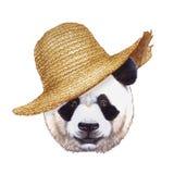 Retrato de la panda con el sombrero de paja Fotografía de archivo