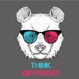 Retrato de la panda en los vidrios coloreados Piense diferente Ilustración del vector ilustración del vector