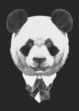 Retrato de la panda en traje Fotografía de archivo libre de regalías